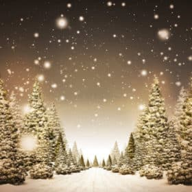 Christmas Green Screen Backgrounds 1